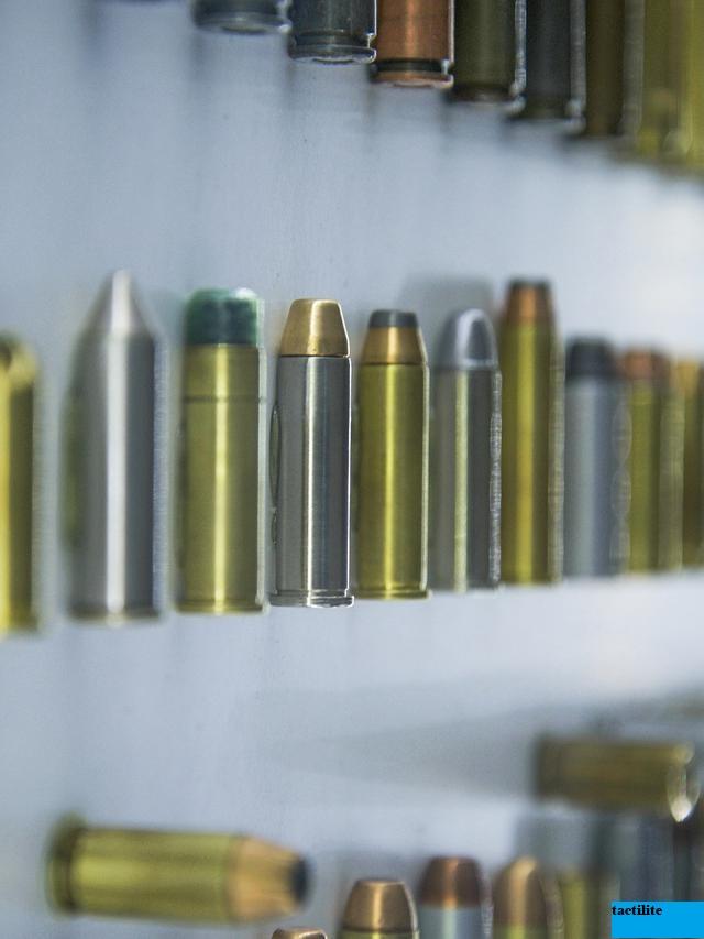 Peluru Senapan Angin Terbaik untuk Menembak Jarak Jauh